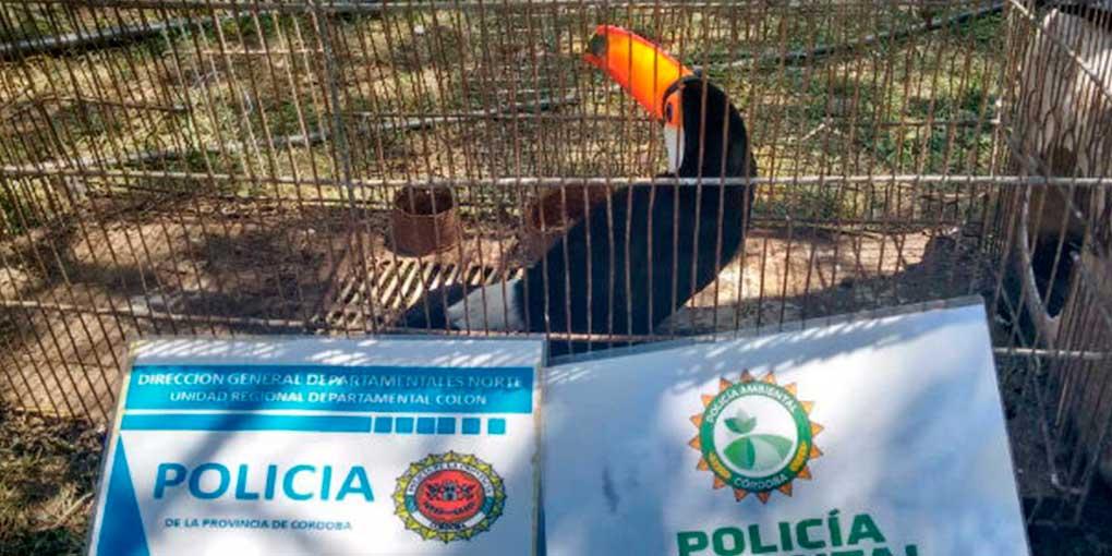 lagranja-policia-02.jpg